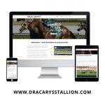 Dracarys Stallion Website Display